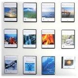 DVD Aquarium Impressions_