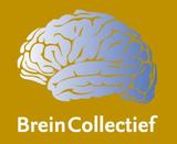 BreinCollectief