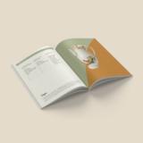 Klessebasjes - Prentenboekje | Vrouwen