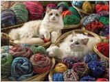 Puzzel - 275 XXL stukjes - Katten tussen bollen wol