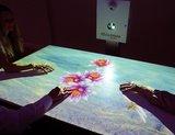 omiVista interactief projectiesysteem - vloer, muur, tafel_