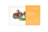 Puzzel - Kleine konijnen_