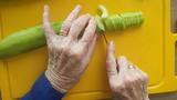 De Tafel van de smaakherinnering - avontuurlijke activiteit voor mensen met dementie_
