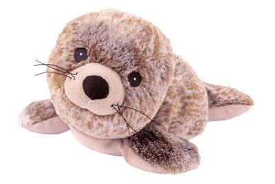 Warmte dier - Zeehond