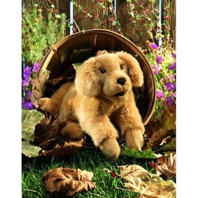 Pop - Handpop Golden Retriever, 43 cm
