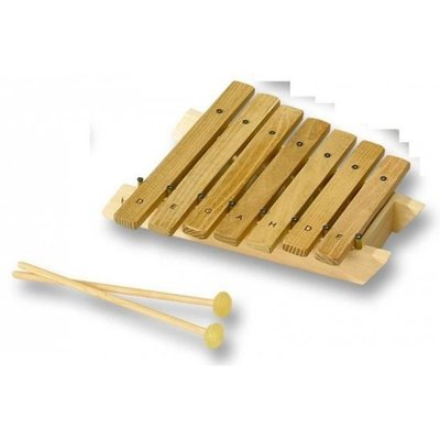 Muziekinstrument - Xylofoon