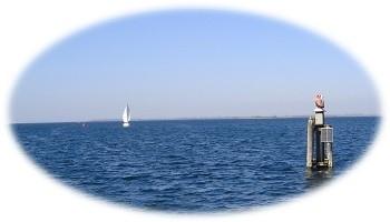 Bekende geur - Zilte Zee
