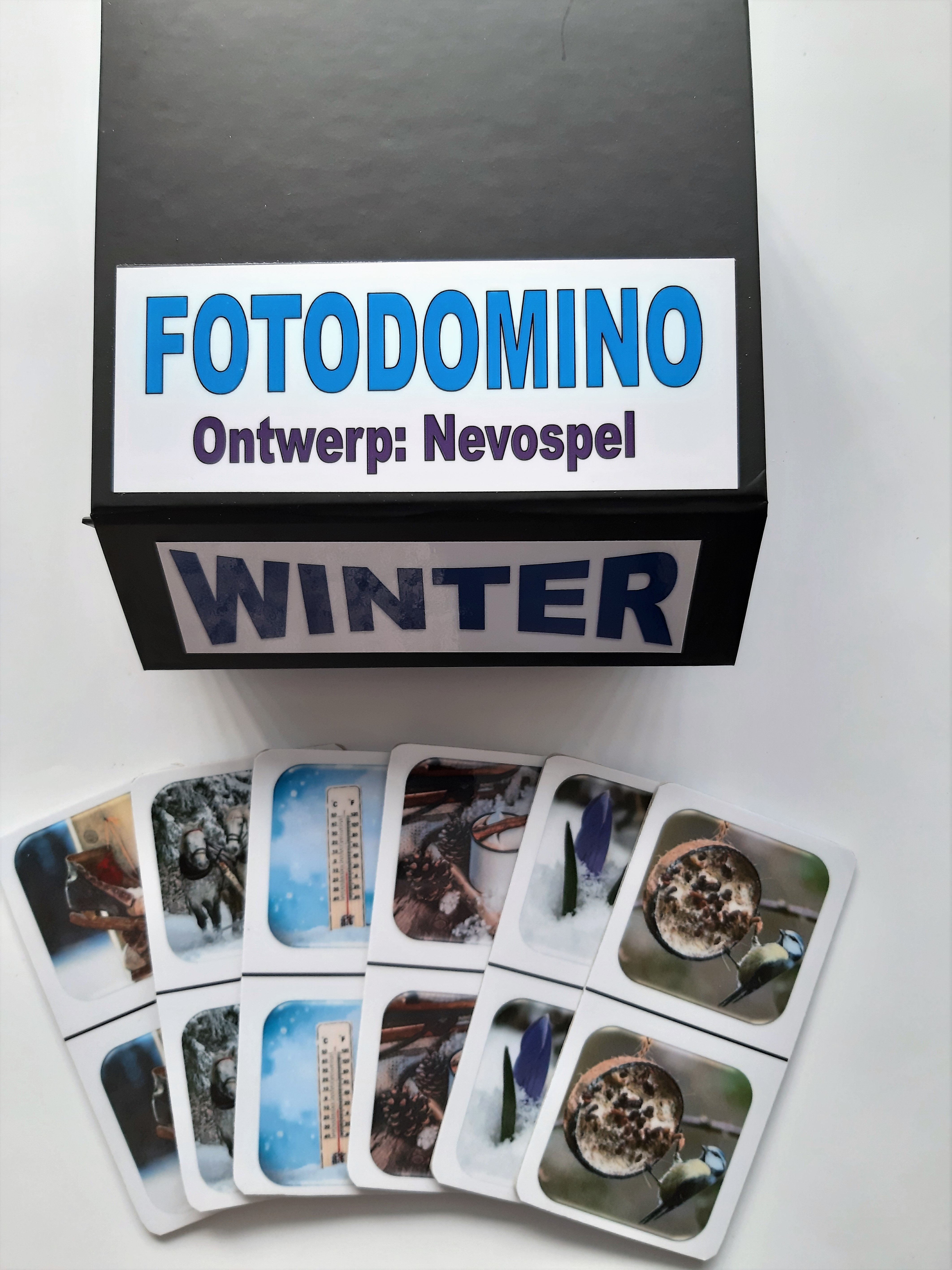 Foto Domino - Winter