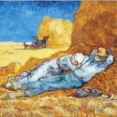 Puzzel - 24 XL stukjes - van Gogh - Middagdutje