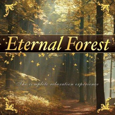 CD Eternal Forest