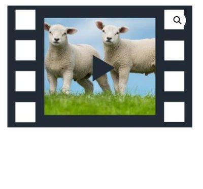 Abonnement 24/7 film - De Rust van Landelijk Leven - Uitbreidingspakket