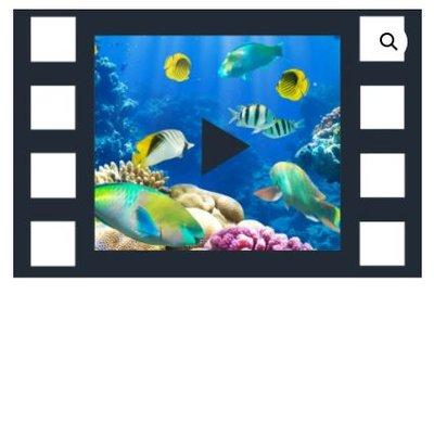 Abonnement 24/7 film - De Rust van Onderwater Leven - Uitbreidingspakket