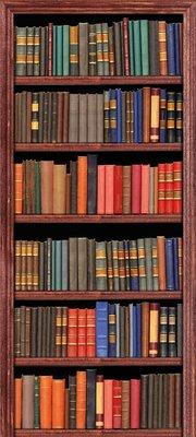 Deursticker boekenkast kleurrijk