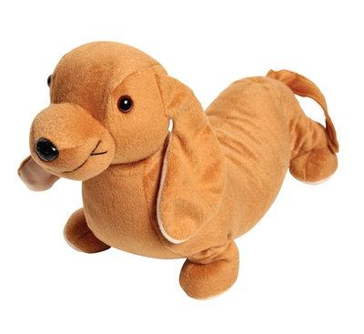 Zware hond - Eigenwijze teckel