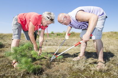 DemenTalent - Vrijwilligerswerk voor mensen met dementie