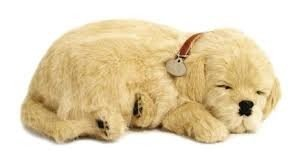 Knuffeldieren - Golden Retriever