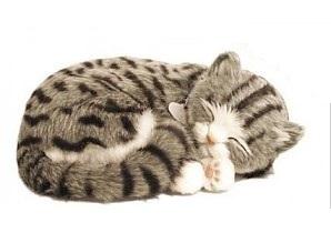 Knuffeldieren - Grijze kat