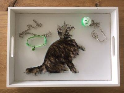 Voelbak - Kat verzorgen